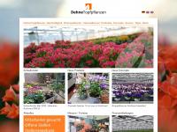 dehne-topfpflanzen.de