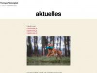 thueringer-workingtest.de
