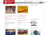 schulzentrumcollhusen.de
