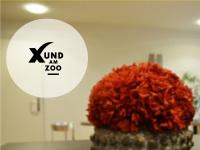xundamzoo.ch Webseite Vorschau