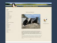 berner-aus-bosau.de