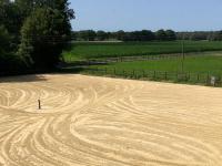 Rv-wanderfalke.de