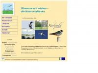 kiekpadd.de Webseite Vorschau