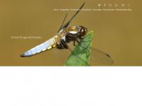 british-dragonflies.org.uk