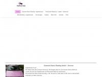 pimpmyface-hh.de