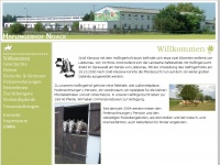 Haflingerhof-noack.de