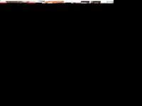 newtone.de Webseite Vorschau