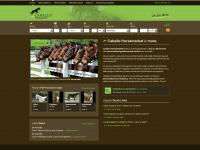 caballo-horsemarket.com