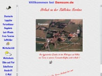 Damsum.de