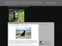 Senta-berner-sennen.blogspot.com