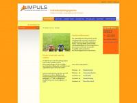 jugendhilfe-impuls.de