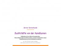 Aareblumenbernersennen.ch