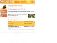 wannziwa.de Webseite Vorschau