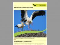 stoerche-oberschwaben.de