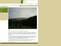 kirchbaumer.de Webseite Vorschau