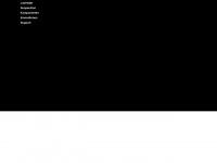 dtswiss.com