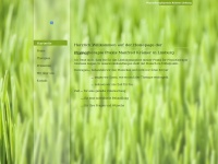physiotherapiepraxis-kraemer.de Webseite Vorschau