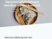 1stinfantry.de Webseite Vorschau