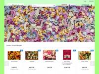 nudelshop-online.de Webseite Vorschau