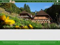 hinterbauer.de Webseite Vorschau