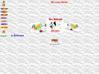 ski-obstlerclub.de