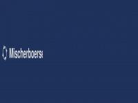 mischerboerse.de Webseite Vorschau