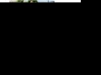 zurhube.at Thumbnail