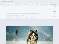 Tierheim-paradiesli.ch