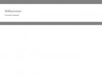 agenturshw.de