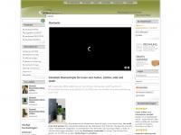 edelstahl-blumentoepfe.com