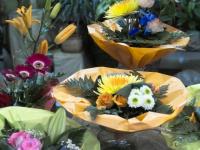 Blumen-hellings.de