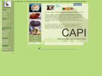 capi-portugal.com