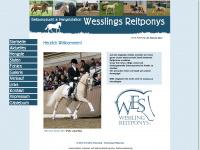 reitponys-wessling.de