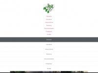 zulliger-schule.de Thumbnail