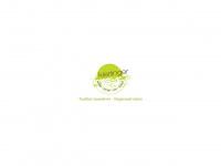 kierlinger.at Webseite Vorschau