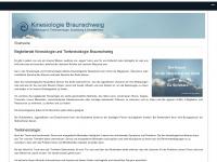 kinesiologie-braunschweig.de Webseite Vorschau