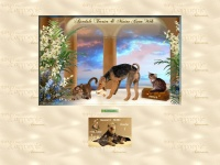 airedale-mainecoon.at