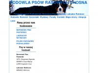 chosna.pl