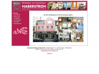 haberstroh-singen.de
