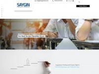 sayginnlp.com