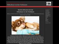 chihuahuas-von-den-vechteauen.de