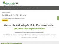 olerum.de Webseite Vorschau