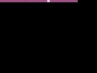 Hochzeitsmesse-riesa.de