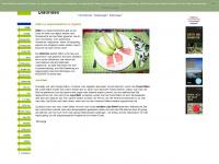 diaetindex.de