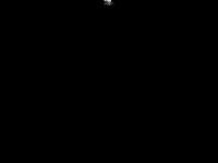 huntermans-partner.de Thumbnail