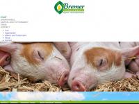 bremergmbh.de