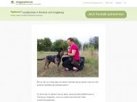 dogsperience.de