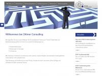 dittmer-consulting.de