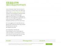 physio-gesslein.de Webseite Vorschau