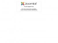 local-support.de Webseite Vorschau